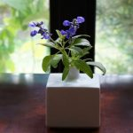 白山陶器のミニ花瓶